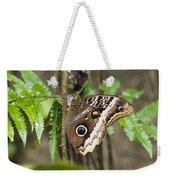 Atreus Owl Portrait  Costa Rica Weekender Tote Bag