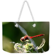August Dragonfly  Weekender Tote Bag