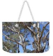 Australian Native Tree 12 Weekender Tote Bag