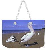 Australian Pelican On Beach Weekender Tote Bag