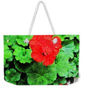 Austrian Red Weekender Tote Bag