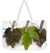 autumm is hanged out - Autumn color leaves Weekender Tote Bag