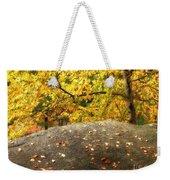 Autumn Boulder And Leaves Weekender Tote Bag