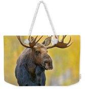 Autumn Bull Moose Weekender Tote Bag
