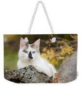 Autumn Cat Weekender Tote Bag