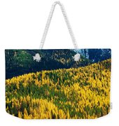 Autumn Color Larch Trees In Pine Tree Weekender Tote Bag