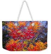 Autumn Colors - 113 Weekender Tote Bag