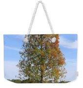 Autumn Cypress Tree Weekender Tote Bag