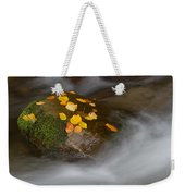 Autumn Detail Weekender Tote Bag