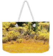 Autumn Fire In The Grass Weekender Tote Bag