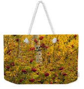Autumn Forest Colors Weekender Tote Bag