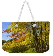 Autumn Forest Scene In West Michigan Weekender Tote Bag