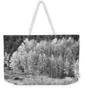 Autumn Grazing Horses Bonanza Bw Weekender Tote Bag by James BO  Insogna
