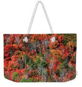 Autumn In The Wasatch Range Weekender Tote Bag