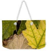 Autumn Is Coming 1 Weekender Tote Bag