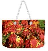 Autumn Leaves 07 Weekender Tote Bag