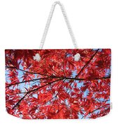 Autumn Leaves And Blue Sky Weekender Tote Bag
