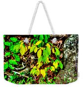 Autumn Leaves In Green And Yellow Weekender Tote Bag