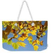 Autumn Leaves Of The Tulip Tree Weekender Tote Bag