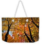 Autumn Maple Trees Weekender Tote Bag