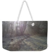 Autumn Morning 5 Weekender Tote Bag by David Stribbling