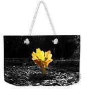 Autumn Oak Isolations Weekender Tote Bag