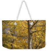 Autumn Orange Forest Colors At Hager Park No.1189 Weekender Tote Bag