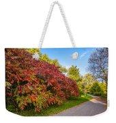 Autumn Path Weekender Tote Bag