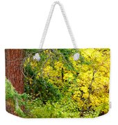Autumn Splendor 14  Weekender Tote Bag