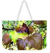 Autumn Splendor 4 Weekender Tote Bag