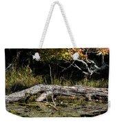 Autumn Swamp Weekender Tote Bag
