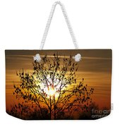 Autumn Tree In The Sunset Weekender Tote Bag