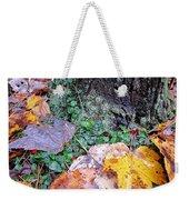 Autumn Tree Trunk  Weekender Tote Bag