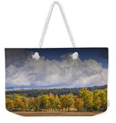 Autumn Trees In A Row Weekender Tote Bag