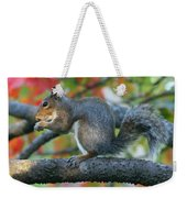 Autumnal Squirrel Weekender Tote Bag