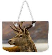 Autumnal Stag Weekender Tote Bag