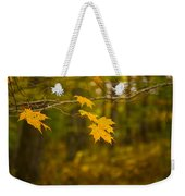 Autumns Fast Approach Weekender Tote Bag