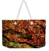 Autumn's Glory Weekender Tote Bag by Anne Gilbert