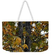 Autumn's Golden Hickory Tree Weekender Tote Bag