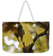 Autumn's Wondrous Colors 1 Weekender Tote Bag