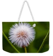 Awaiting The Wind Weekender Tote Bag