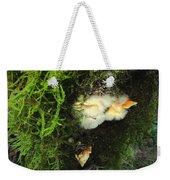 Awe Inspiring Fungi Three Weekender Tote Bag