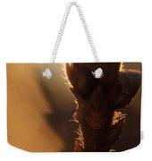 Azalea Flower Bud Sunrise - 1 Weekender Tote Bag