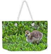 Babe On Safari Weekender Tote Bag