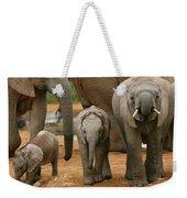 Baby African Elephants II Weekender Tote Bag