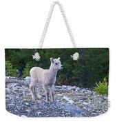 Baby Big Horn Sheep Weekender Tote Bag
