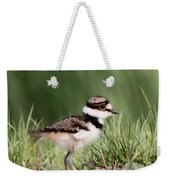 Baby - Bird - Killdeer Weekender Tote Bag