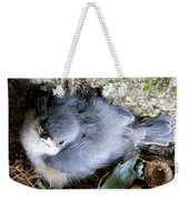 Baby Bird Learns A Lesson Weekender Tote Bag