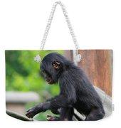 Baby Bonobo Weekender Tote Bag