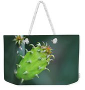 Baby Cactus - Macro Photography By Sharon Cummings Weekender Tote Bag
